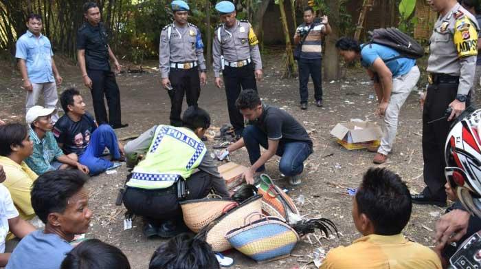 polisi bubarkan kegiatan sabung ayam